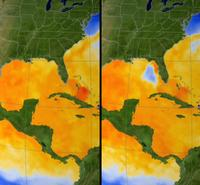 Sea Surface Temperature - Effects of Hurricane Dennis 2005