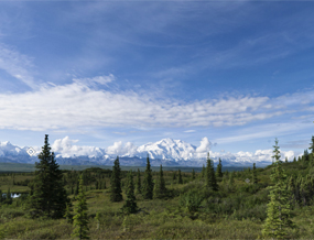Mt. McKinley from Wonder Lake
