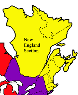 Graphic of the extent of the New England NAGT Section